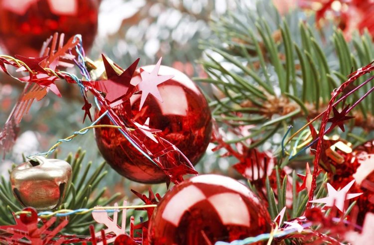 Vánoční stromky? Ideálně skončí v kompostu