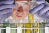 Velmi malé dávky herbicidu Roundup způsobují závažné onemocnění jater