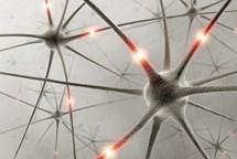 Téměř čtyři sta přednášek o trénování paměti po celé republice. Národní týden trénování paměti začíná