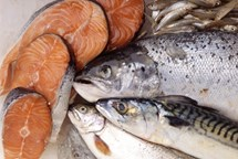 Farmářské trhy a Ryba na talíř