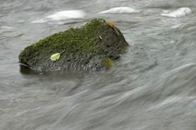 Hranici sucha v povod� Moravy hl�s� jeden�ct stanic