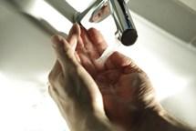 Epidemie žloutenky v Litoměřicích není zažehnána. Pozor na hygienu