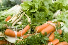 Farmářské trhy najdete opět v pátek u Tržnice