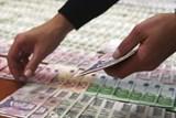 Daňová Kobra je stále efektivnější, letos už uchránila přes dvě miliardy
