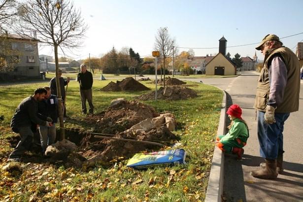 Popis: Obyvatelé Hošťky vysázeli nové stromy.