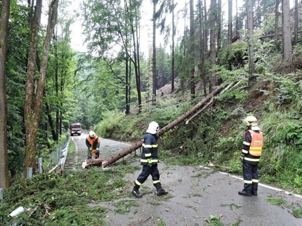 Popis: Silný vítr zlámal řadu stromů, hasiči Libereckém kraji je odklízeli z komunikací.