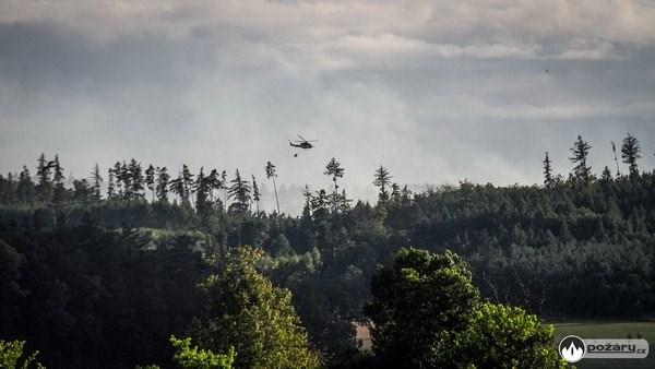 Popis: Velký požár lesa likvidovali hasiči z Moravskoslezského kraje v okrese Opava. Zde se vystřídalo skoro osm desítek hasičů a škoda se vyšplhala na 6 milionů korun.