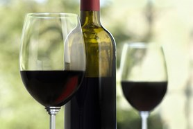 Vinobraní v Litoměřicích láká nabitým programem i dobrou tradicí