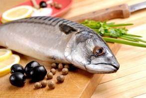 Rybí maso je vhodné i pro kojence aneb Důležitá fakta o rybách v dětském jídelníčku