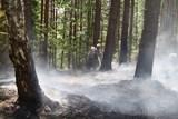 Hasiči se potýkají s velkým množstvím požárů v přírodním prostředí