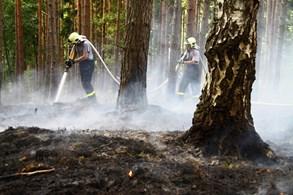 Letošní červenec zaznamenal rekordní počet požárů