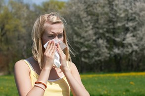 Alergie zvyšuje globální oteplování, špinavé ovzduší i stres