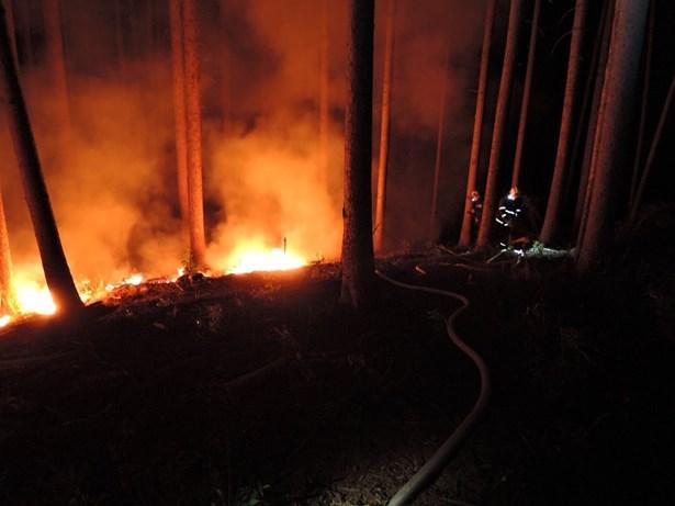 Popis: Požár lesna Tatobity.