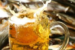 Ve Znojmě se pivo vaří, tam se dobře daří