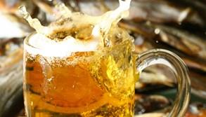 Na soutoku řek se budou prezentovat místní pivovary