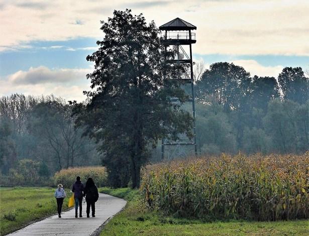 Popis: Partneři z polských Krzyżanowic postavili sedmadvacetimetrovou rozhlednu na polské straně Odry.