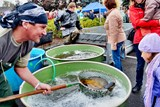 Rychvaldské rybí slavnosti nabídnou Langerovou, Radečky i výlety do oblak