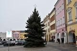 Radnice v Kroměříži vyměnila vánoční strom na náměstí, důvodem je bezpečnost