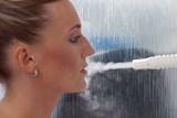 Vincentka pomáhá zbavit se hlenů při rýmě a chřipce, ale i při smogu