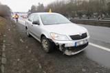 Účet za srážku se psem na dálnici byl vyčíslen na 35 tisíc korun