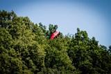 Hasiči zachraňovali paraglidistu ze stromu na kopci u Oder
