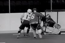 Světový hokejbal míří do Lovosic a Litoměřic