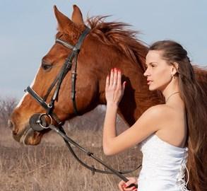 Svatba u Taxisova příkopu? V rámci výstavy Koně v akci to může být realita