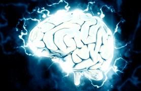 Krajská vědecká knihovna zahájí pravidelné testování IQ – jediné v Libereckém kraji