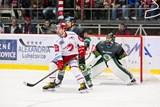 V úporném zápase s Boleslaví vybojoval Třinec důležité tři body
