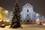 V Opavě už září vánoční strom. Vánoční program zpestří také Aneta Langerová