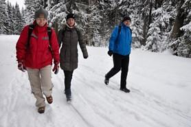 Za sněžnou blechou do Brd