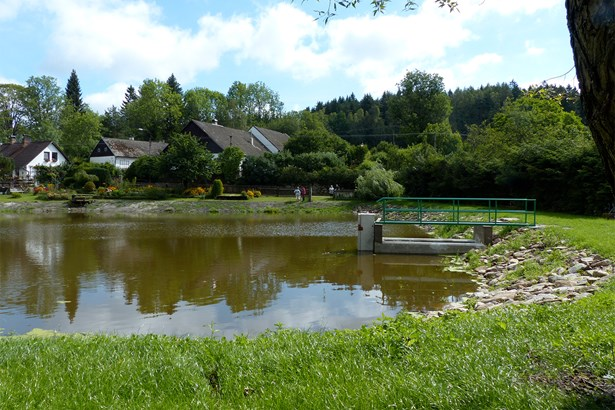 Popis: Odbahněný rybník v Senotíně.