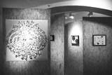 Výstava Trash Made v galerii Neumannka