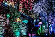 Plzeňský festival světla BLIK BLIK se blíží
