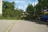 Chlapce na Karvinsku zranil padající strom