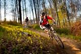 Cykloturistický okruh v pohraničních slovenských a polských lázních