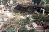 Škody na hřbitově uhradí majitelům hrobů město Náchod