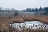 Kroměříž chce koupit pozemky v cihelně, aby do ní nenavezli nebezpečné látky