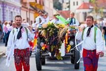 Druhý zářijový víkend bude v Mikulově opět žít Pálavským vinobraním
