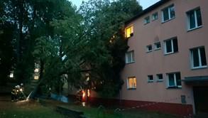 Šestkrát více technických výjezdů hasičů kvůli bouři Fabienne