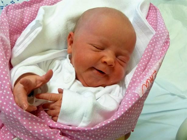 Popis: Prvním dítětem roku 2019 narozeným v třinecké nemocnici je holčička Ema.