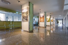 Nemocnice Ostrov rozšiřuje spektrum chirurgických zákroků