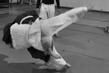 Jablonec získal dotaci na judo arénu