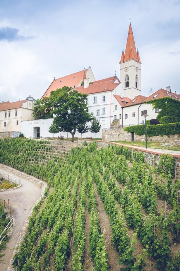 Popis: Pohled na Rajskou vinici a kostel sv. Mikuláše z degustačního stánku vinařství Lahofer.