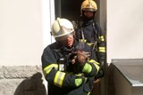 Z hořícího bytu hasiči zachránili kočku a králíka