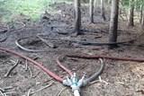 Lesní požár se díky hasičům nestihl rozšířit