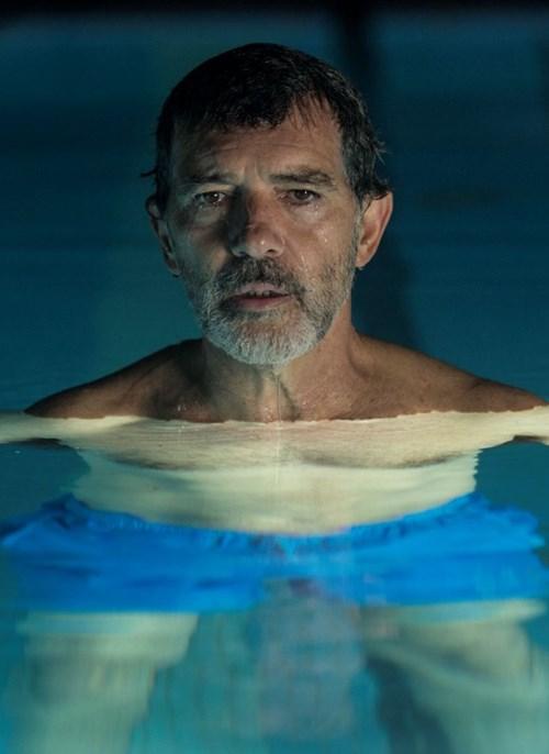 Film Bolest a sláva posbíral sedm cen Goya, v únoru jej uvede festival La Película