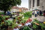 Na Piaristické náměstí se vrátí trhy