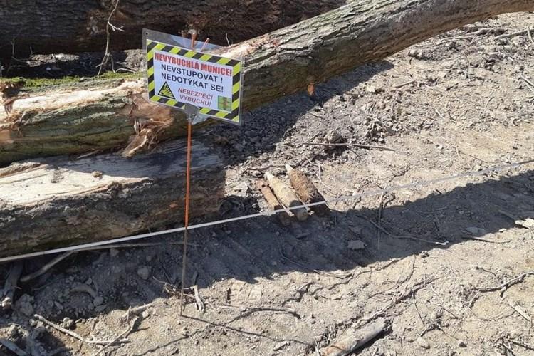 Při pyrotechnickém průzkumu byla na skládce odpadů v Rapotíně nalezena munice