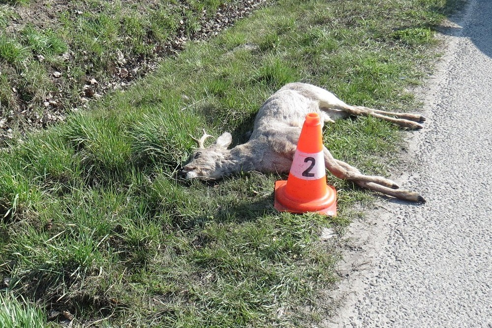 Popis: Dopravní nehoda u Bílska ze dne 04. 04. 2020